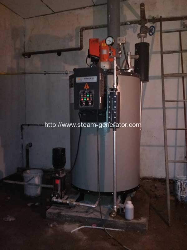 Vertical Water Tube Gas Steam Generator Reliable Steam