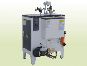 Mini Electric Steam Boiler