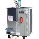 9KW Electric Steam Generator