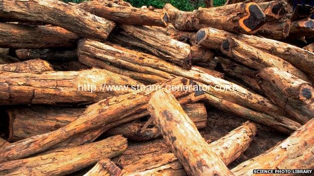 Concerns over carbon emissions from burning wood