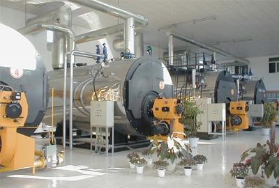 WNS Oil-Gas Boiler