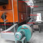 Mix Fuel Biomass Boiler